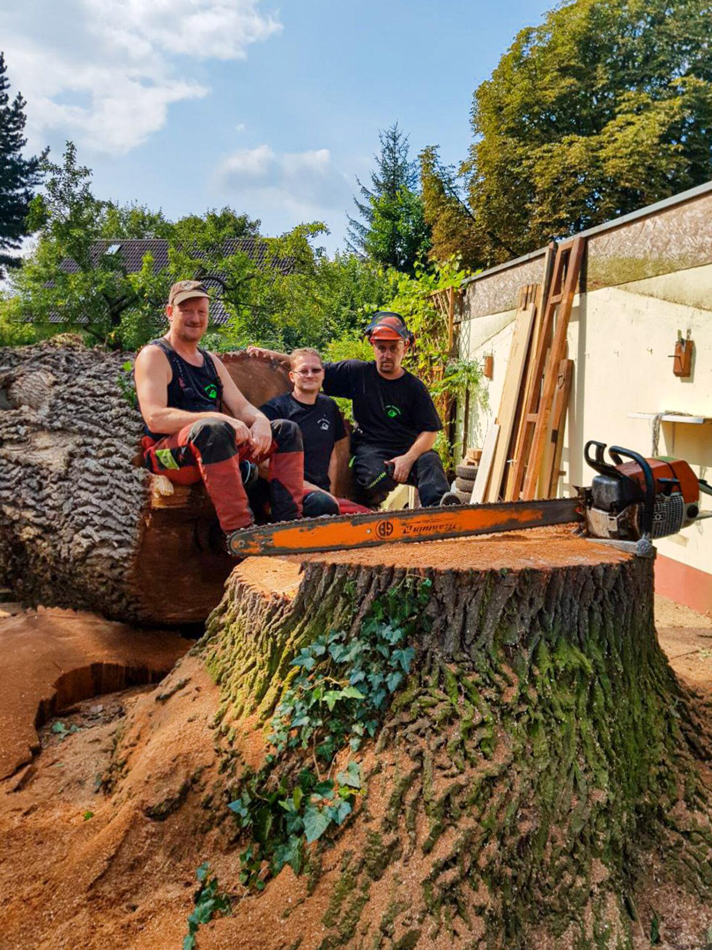 Biber-Baumdienst Mitarbeiter – Der langjährige Mitarbeiterstamm mit großem Erfahrungsschatz