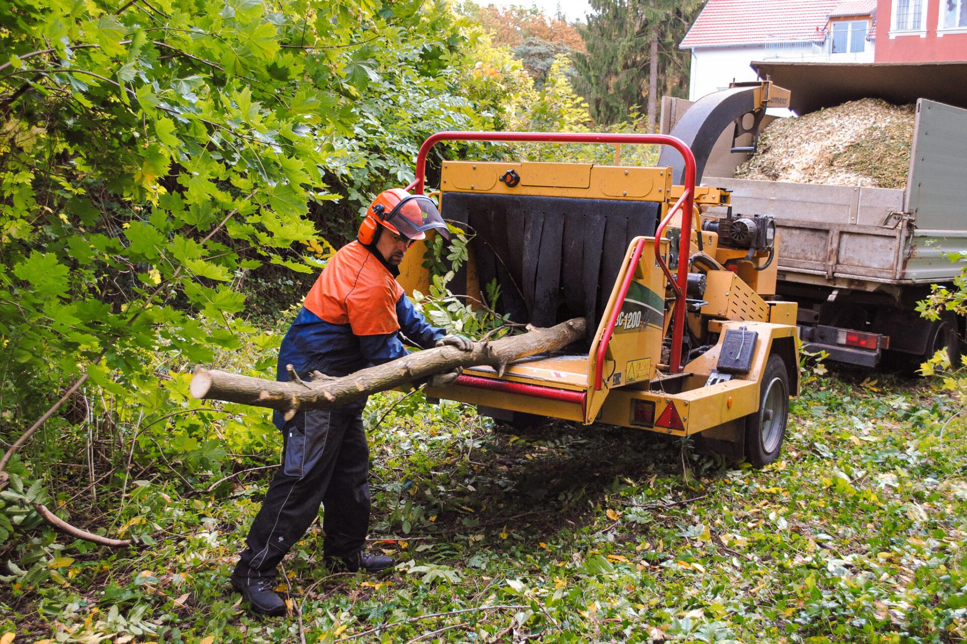 Biber-Baumdienst – Häcksler im Einsatz